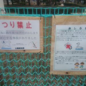 【釣り禁止】ひたちなか市 大島公園