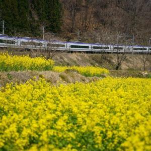 春の風景と大糸線 2