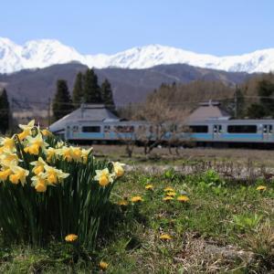 春の風景と大糸線 3