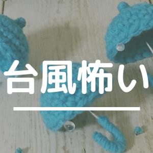 台風なう〜自閉ちゃん興奮中〜