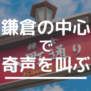 鎌倉で大爆発だよ自閉ちゃん~17キロの抱っこちゃん~