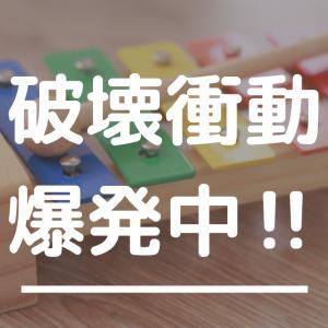 破壊衝動が抑えられない件〜くみくみスロープ崩壊中〜