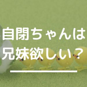 第二子どうするか問題〜自閉症児の兄妹児事情〜