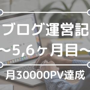 【月間30000PV】開設5,6ヶ月目のPV数と収益、検索流入状況について~将棋と子育てブログ同時運営記~