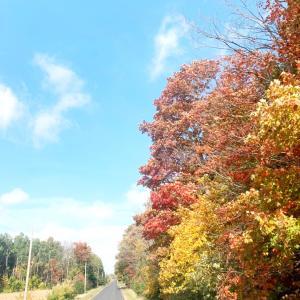 秋のおでかけ、トレイルと田舎街