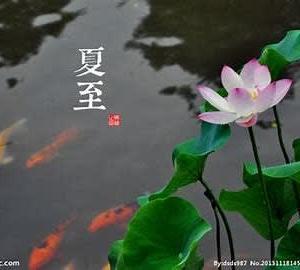黒鯉は自意識つよし夏至の家宮坂静生