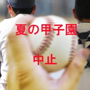 甲子園 高校野球 中止