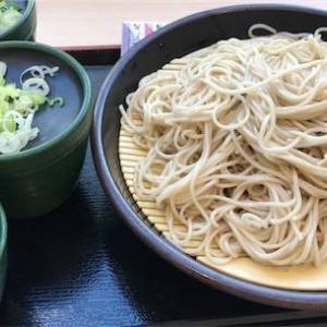 【ダイエット?】ゆで太郎にて蕎麦2枚もり。侮り難し。