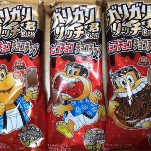 【夏チョコ】ガリガリ君リッチ チョコチョコチョコチップ