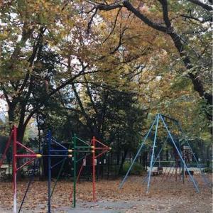 【0円筋トレ】猛者たちが集う日比谷公園高鉄棒広場