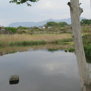 東の飛鳥・薬師寺八幡宮