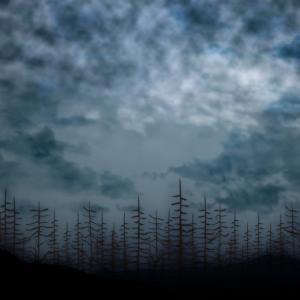 4月10日 水曜日 室温10.9℃ 湿度58% 曇りのち雨 7時すぎ