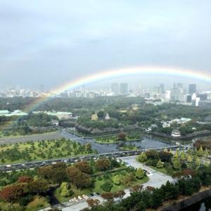 『ネットで話題』まるでおとぎ話!即位の礼で雲の合間から虹が!