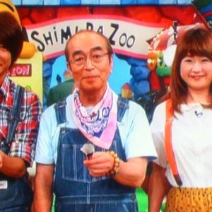 『志村どうぶつ園』9月で閉園決定!10月からの新番組は?