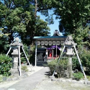 今日は神社とお寺へ。