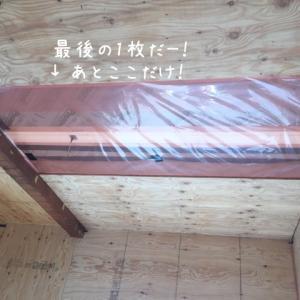 夫婦2人でDIY、セルフリノベ。天井の構造用合板。