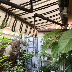 2階の窓にもオーニングテント設置:DIY