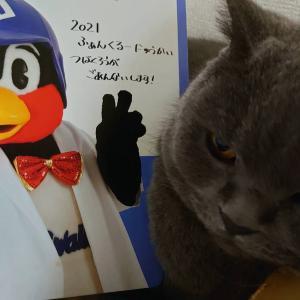 9/25 タイガース戦 ○ 3-6