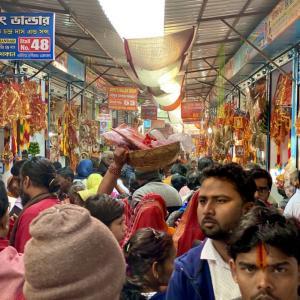 【インド】コルカタで山羊の生贄の儀式を見に行く。