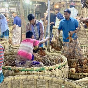 【バングラディシュ】オールド・ダッカのシズル過ぎる市場巡りとローカル食堂の流儀。