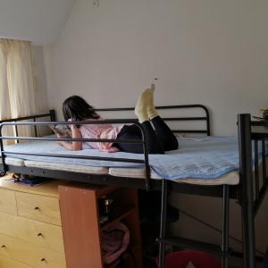 【4畳半の子供部屋①】兄に続き、小3娘にも個室を。ベッド、机、本棚、タンス…狭いスペースにあらゆる家具をどう置く?~「ロフトベッド」という手段