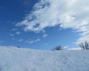 大雪のあと