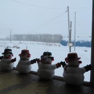 予報通り、明け方から午後まで雪が降った一日