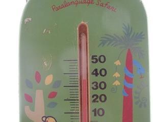 寒暖差が激しいですね & 池田町出身の直木賞作家