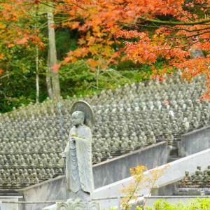 速報…呑山観音寺と英彦山の紅葉