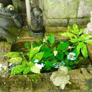 如意輪寺…別名かえる寺