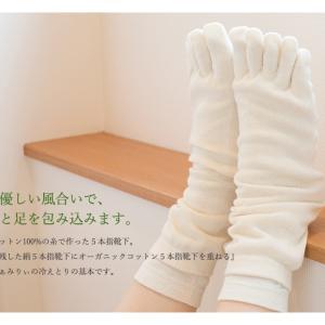 やっぱりおすすめ「シルクふぁみりぃ」!5本指靴下買い足しました