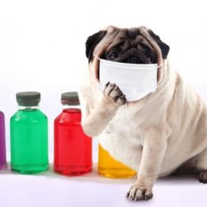 マスクがインフルエンザを防げるか