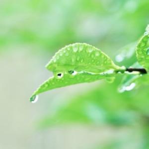 梅雨の時期の家事を快適にしたい問題