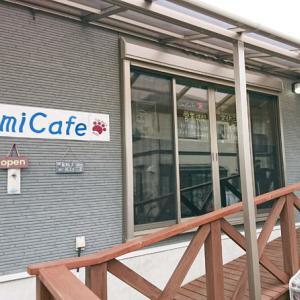波の音が聞こえるカフェ「Umi Cafe」が2周年