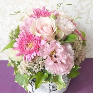 フラワー&グリーン 藤屋が、山口県花の販売協力専門店に認定されました
