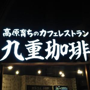 【福岡市南区】「九重珈琲大橋店」肉と野菜のバランスが良い九重高原定食