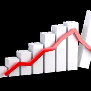 【投資信託の運用実績】私のポートフォリオとリターンの実態