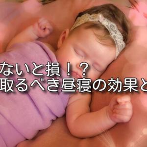 毎日昼寝をすると良い?昼寝に隠された秘密とは!?