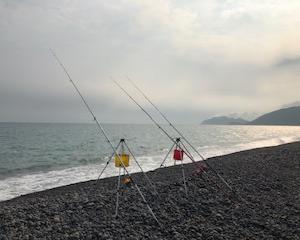 煙樹ヶ浜の半夜釣り 2019/6/21