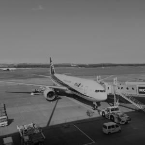 初めて乗った飛行機