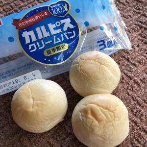 乳酸さわやかで…食べやすい!【山崎製パン】カルピスクリームパン