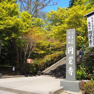 【北鎌倉】座禅会も開催されている円覚寺へ