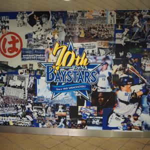 【横浜ベイスターズ⭐️】初生野球観戦をしたらとても素晴らしいことが分かった…!😊