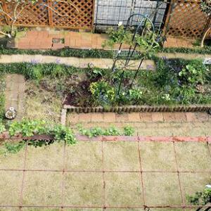 庭のリフォーム(前半)
