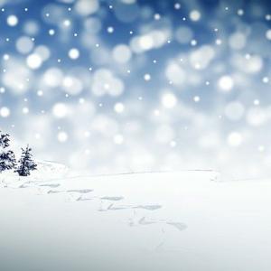 コレッリ「クリスマス協奏曲」【解説と名盤、無料楽譜】