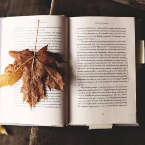社会人が毎朝30分の読書を1年間続けて実感した良かったこと