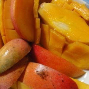 マンゴーとフルーツコウモリ