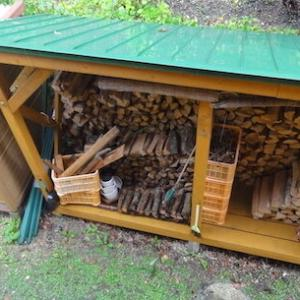薪小屋の野ネズミ
