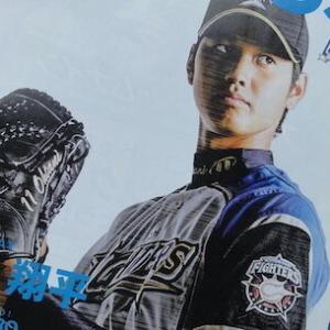 大谷翔平選手・札幌ドーム