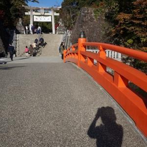 紅葉の武田神社